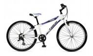 Подростковый велосипед Trek MT 200 (2009)