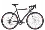 Шоссейный велосипед Trek Ion CX (2013)
